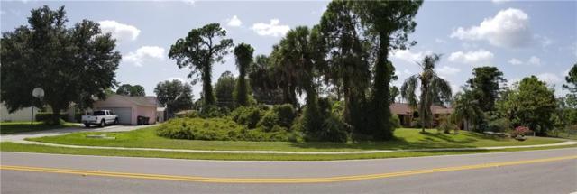 N Chamberlain Boulevard, North Port, FL 34286 (MLS #A4413346) :: KELLER WILLIAMS CLASSIC VI
