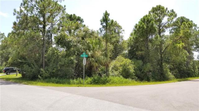 Fling Avenue, North Port, FL 34291 (MLS #A4413365) :: Medway Realty