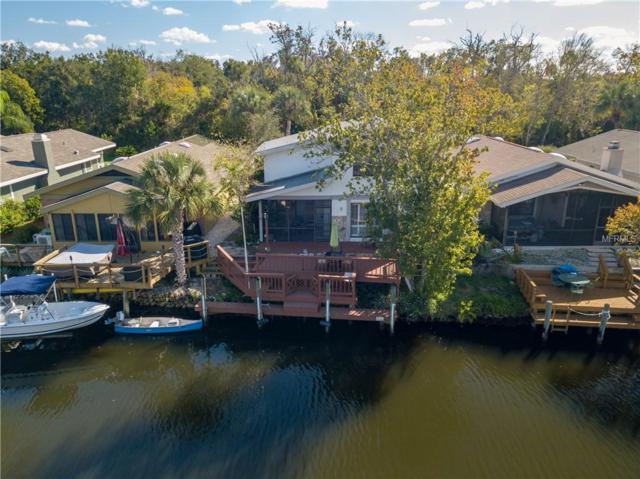 5214 S Riverview Circle, Homosassa, FL 34448 (MLS #A4414387) :: The Duncan Duo Team