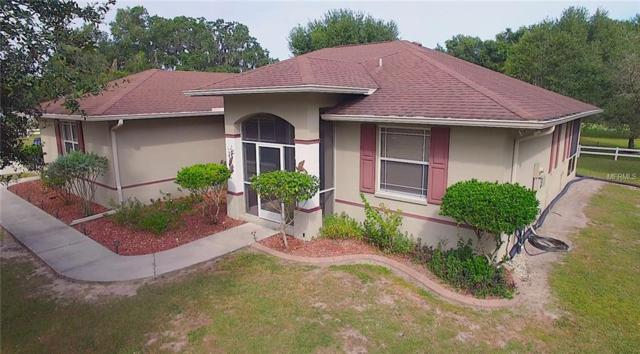 11950 69TH Street E, Parrish, FL 34219 (MLS #A4417083) :: Medway Realty