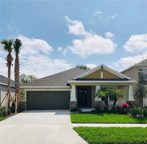 8014 Marbella Creek Avenue, Tampa, FL 33625 (MLS #A4420988) :: Medway Realty