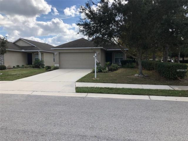 3401 99TH Street E, Palmetto, FL 34221 (MLS #A4421258) :: Premium Properties Real Estate Services