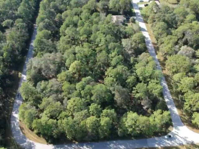 Lovering Avenue, North Port, FL 34286 (MLS #A4421516) :: Homepride Realty Services