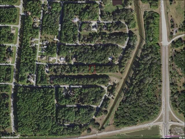 Dufferin Avenue, North Port, FL 34286 (MLS #A4421840) :: Dalton Wade Real Estate Group