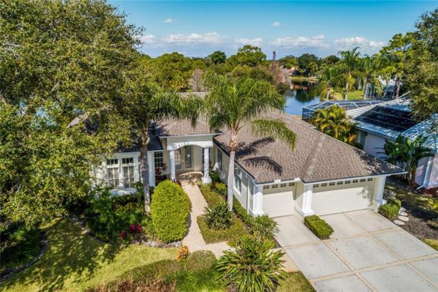 8687 Woodbriar Drive, Sarasota, FL 34238 (MLS #A4425219) :: Medway Realty