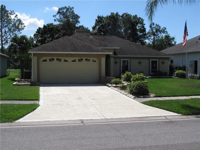 1203 Ventana Drive, Ruskin, FL 33573 (MLS #A4428646) :: Advanta Realty