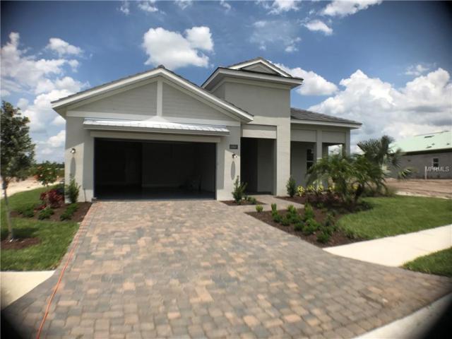 17617 Azul Drive, Lakewood Ranch, FL 34202 (MLS #A4428888) :: The Duncan Duo Team