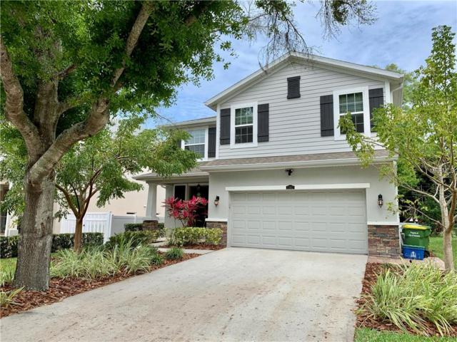 2167 Hawthorne Street, Sarasota, FL 34239 (MLS #A4430033) :: Baird Realty Group