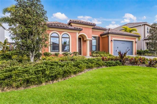 12014 Perennial Place, Bradenton, FL 34211 (MLS #A4430193) :: Cartwright Realty