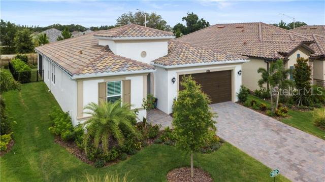 12217 Perennial Place, Lakewood Ranch, FL 34211 (MLS #A4430370) :: Medway Realty