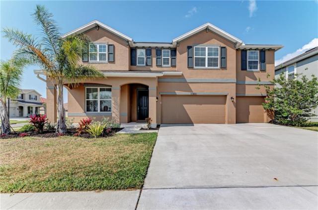 11902 Quack Grass Court, Riverview, FL 33579 (MLS #A4432773) :: Team Suzy Kolaz