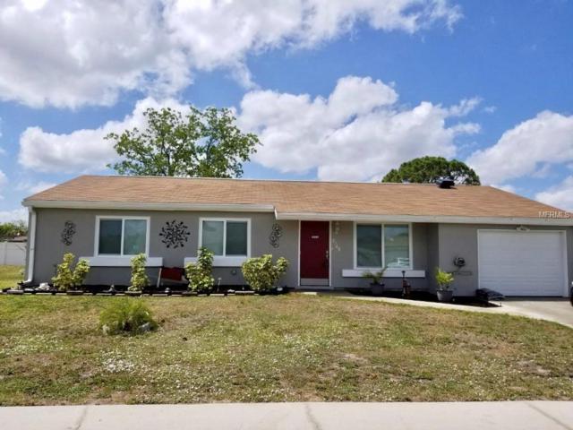 8149 San Jacinto Avenue, North Port, FL 34287 (MLS #A4434580) :: Team Bohannon Keller Williams, Tampa Properties