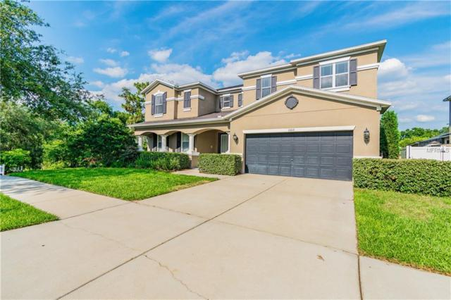11012 Pond Pine Drive, Riverview, FL 33569 (MLS #A4435509) :: Team Bohannon Keller Williams, Tampa Properties