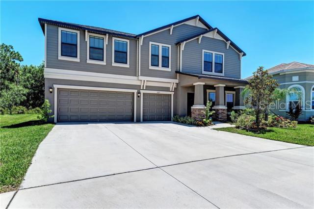 5025 Ivory Stone Drive, Wimauma, FL 33598 (MLS #A4437001) :: Team Bohannon Keller Williams, Tampa Properties