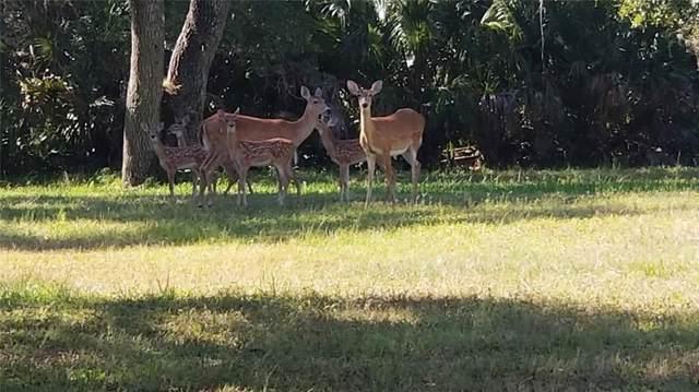 Letitia Lane, Sarasota, FL 34241 (MLS #A4437776) :: Delgado Home Team at Keller Williams