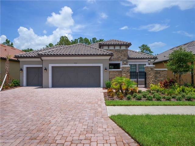20011 Umbria Hill Drive, Tampa, FL 33647 (MLS #A4440914) :: Team Bohannon Keller Williams, Tampa Properties