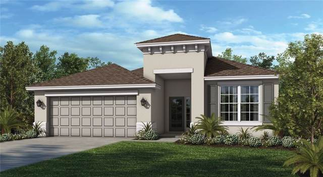 29882 Chapel Chase Drive, Wesley Chapel, FL 33545 (MLS #A4445545) :: The Duncan Duo Team