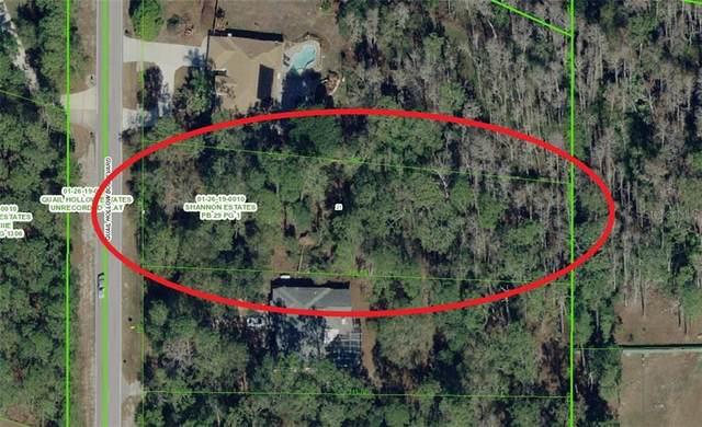 7001 Quail Hollow Boulevard, Wesley Chapel, FL 33544 (MLS #A4468988) :: Team Bohannon Keller Williams, Tampa Properties