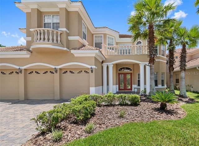 10541 Martinique Isle Drive, Tampa, FL 33647 (MLS #A4469678) :: Team Bohannon Keller Williams, Tampa Properties