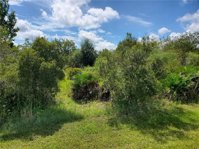 39825 20TH Place E, Myakka City, FL 34251 (MLS #A4477713) :: Sarasota Home Specialists