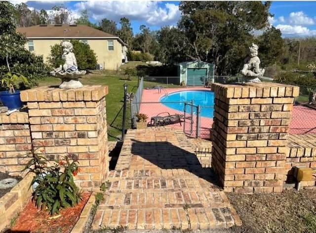 1910 College Park Drive, Tavares, FL 32778 (MLS #A4491827) :: Griffin Group