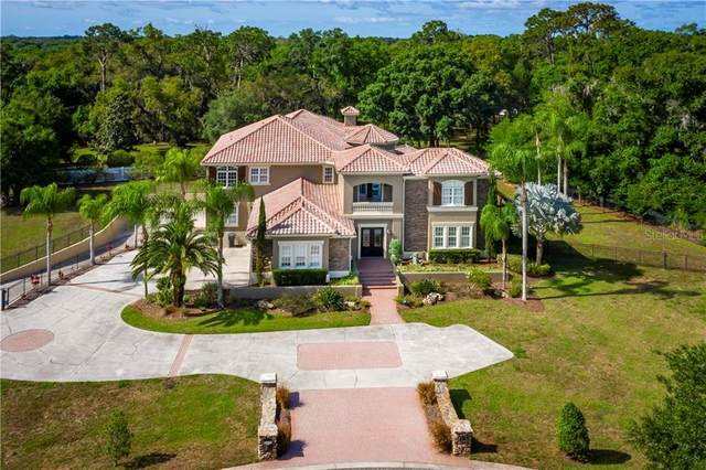 8610 Dolce Vita Lane, Odessa, FL 33556 (MLS #A4494741) :: Rabell Realty Group
