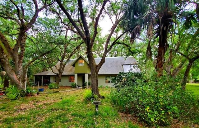 4224 NW North Road, Arcadia, FL 34266 (MLS #A4495262) :: Keller Williams Realty Peace River Partners