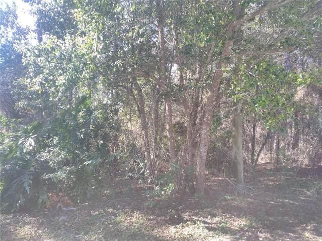 2841 Wyman Court, Deltona, FL 32738 (MLS #A4498786) :: Bustamante Real Estate