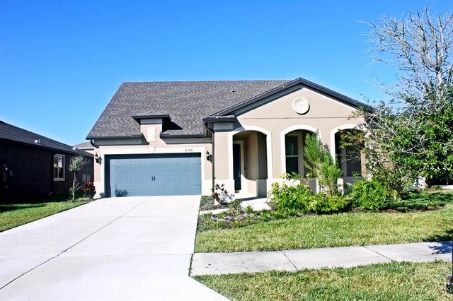 8356 Olive Brook Drive, Wesley Chapel, FL 33545 (MLS #A4500055) :: Bustamante Real Estate
