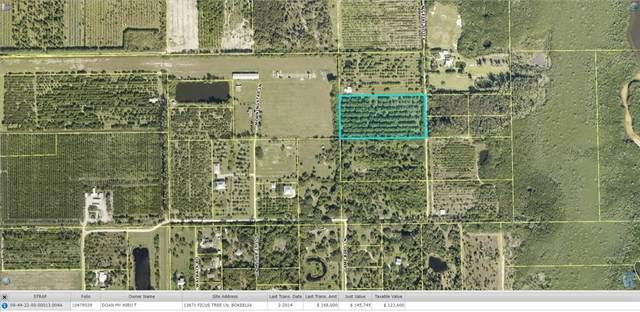 13671 and 13681 Ficus Tree Lane, Bokeelia, FL 33922 (MLS #A4500410) :: SunCoast Home Experts