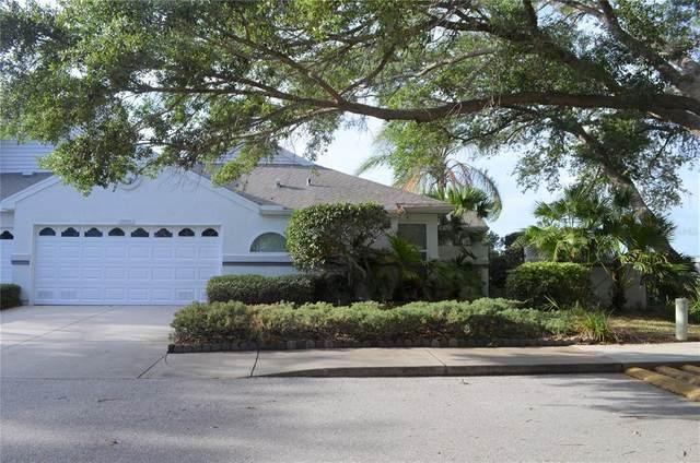 11002 Perico Way, Bradenton, FL 34209 (MLS #A4501449) :: The Hustle and Heart Group