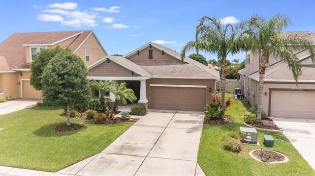 5711 Arbor Wood Court, Bradenton, FL 34203 (MLS #A4506039) :: Zarghami Group
