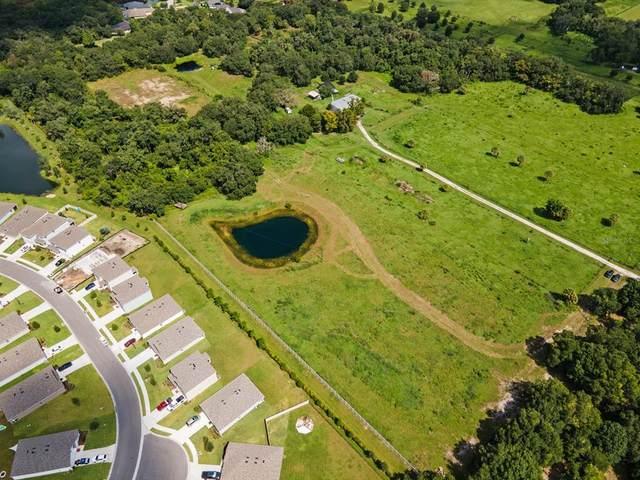 3125 N Rye Road, Parrish, FL 34219 (MLS #A4506702) :: CARE - Calhoun & Associates Real Estate