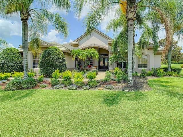 33627 Americana Avenue, Dade City, FL 33525 (MLS #A4506915) :: Zarghami Group