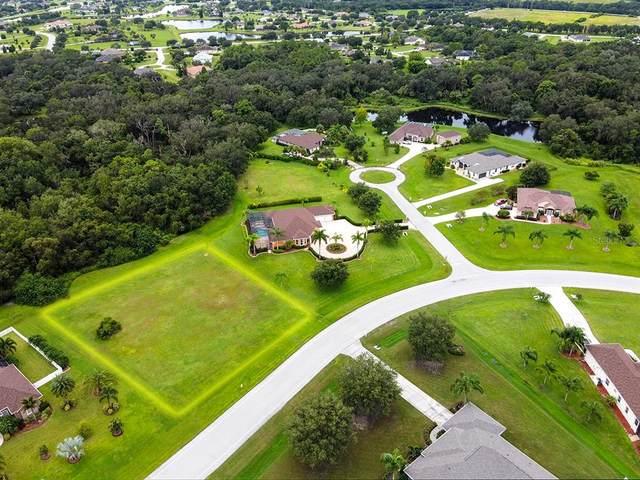 5508 Saddlewood Terrace, Parrish, FL 34219 (MLS #A4511405) :: Zarghami Group