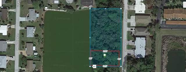 1700 Shadow Lane, Englewood, FL 34224 (MLS #A4511671) :: Delgado Home Team at Keller Williams