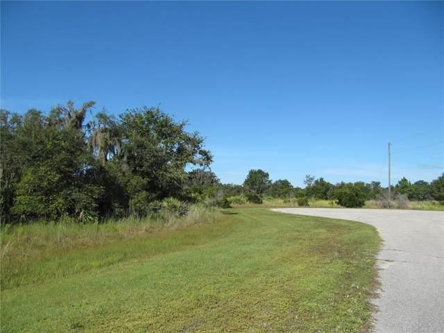 1020 406TH Court E, Myakka City, FL 34251 (MLS #A4513015) :: Delgado Home Team at Keller Williams