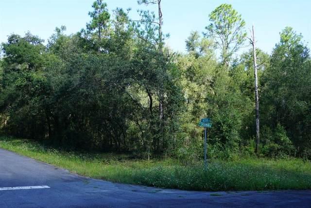 9271 N Sherman Drive, Citrus Springs, FL 34434 (MLS #A4513215) :: Zarghami Group
