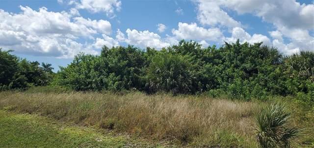 14378 Aurella Circle, Port Charlotte, FL 33981 (MLS #A4513512) :: Everlane Realty