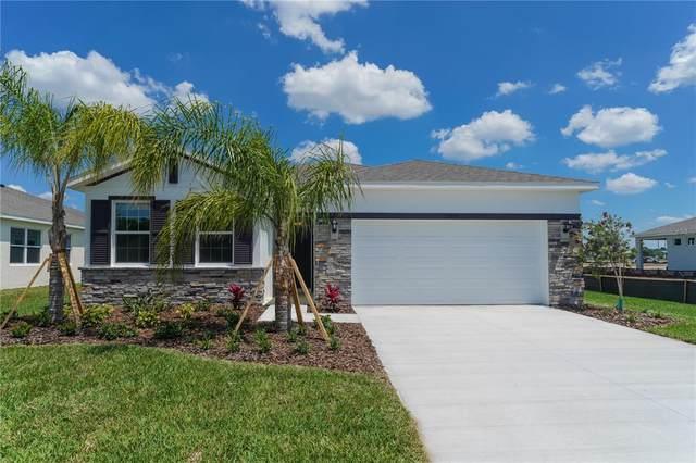 13805 Woodbridge Terrace, Lakewood Ranch, FL 34211 (MLS #A4514345) :: Charles Rutenberg Realty