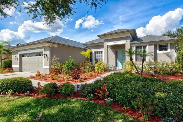 12203 Aster Avenue, Bradenton, FL 34212 (MLS #A4514404) :: The Nathan Bangs Group