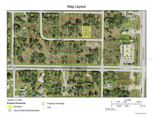 338 Astor Circle, Punta Gorda, FL 33982 (MLS #A4514669) :: Blue Chip International Realty