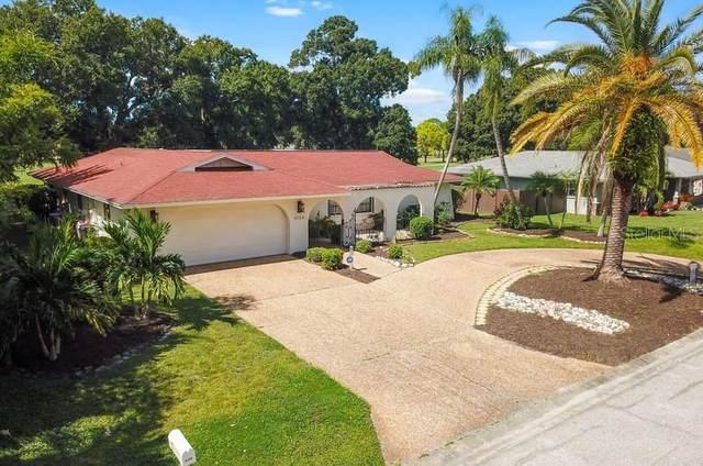 4134 Southwell Way, Sarasota, FL 34241 (MLS #A4514804) :: Medway Realty