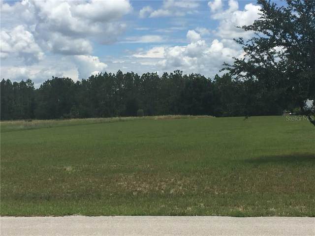 Brooke Lakes Drive, Fort Meade, FL 33841 (MLS #B4700885) :: Rabell Realty Group