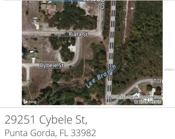 29251 Cybele Street, Punta Gorda, FL 33982 (MLS #C7233524) :: The Duncan Duo Team