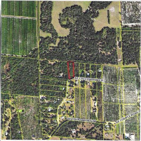 2905 Creekwood Terrace, Arcadia, FL 34266 (MLS #C7246117) :: Griffin Group
