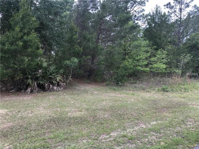 1506 W Landmark Drive, Citrus Springs, FL 34434 (MLS #C7249151) :: The Duncan Duo Team