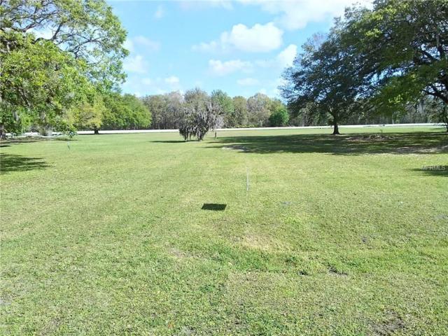 Terrell Street, Arcadia, FL 34266 (MLS #C7249609) :: Premium Properties Real Estate Services
