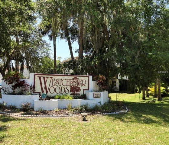 22481 Westchester Boulevard B39, Port Charlotte, FL 33980 (MLS #C7400431) :: The Duncan Duo Team