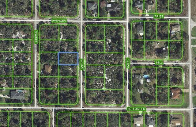 211 Baron Avenue NW, Lake Placid, FL 33852 (MLS #C7404664) :: Sarasota Home Specialists